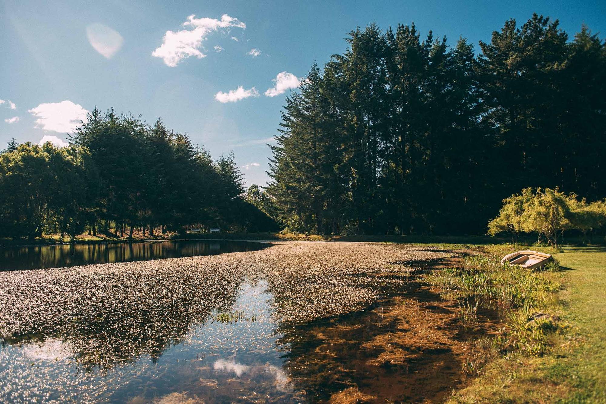 la fragua centro de eventos-purranque-decima region-llanquihue-matrimonio campestre-fotografo documental de matrimonios-make up-ceremonia-aire libre